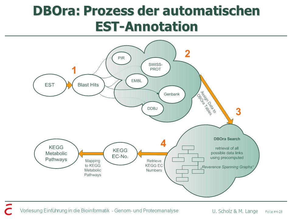 Vorlesung Einführung in die Bioinformatik - U. Scholz & M. Lange Folie #4-28 Genom- und Proteomanalyse DBOra: Prozess der automatischen EST-Annotation