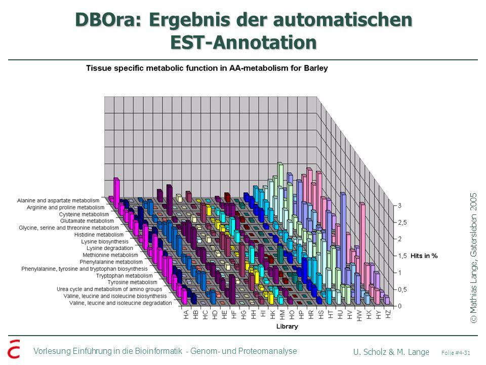 Vorlesung Einführung in die Bioinformatik - U. Scholz & M. Lange Folie #4-31 Genom- und Proteomanalyse DBOra: Ergebnis der automatischen EST-Annotatio