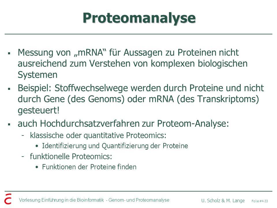 Vorlesung Einführung in die Bioinformatik - U. Scholz & M. Lange Folie #4-33 Genom- und Proteomanalyse Proteomanalyse Messung von mRNA für Aussagen zu