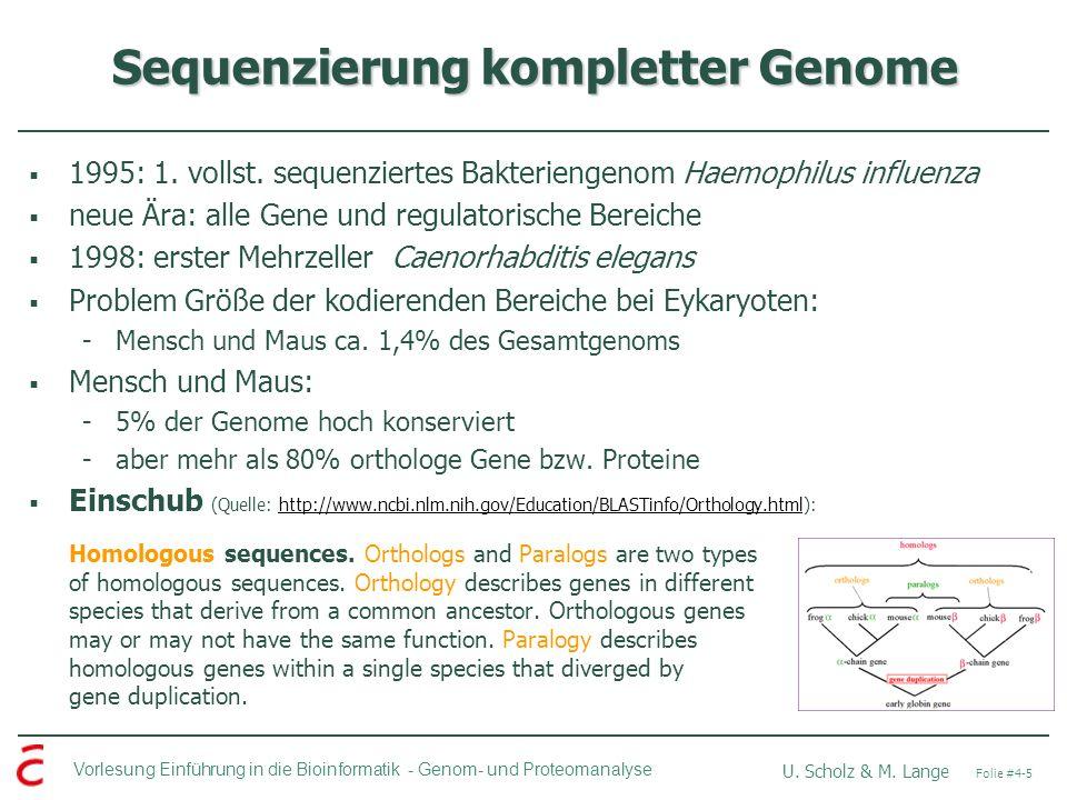 Vorlesung Einführung in die Bioinformatik - U. Scholz & M. Lange Folie #4-5 Genom- und Proteomanalyse Sequenzierung kompletter Genome 1995: 1. vollst.