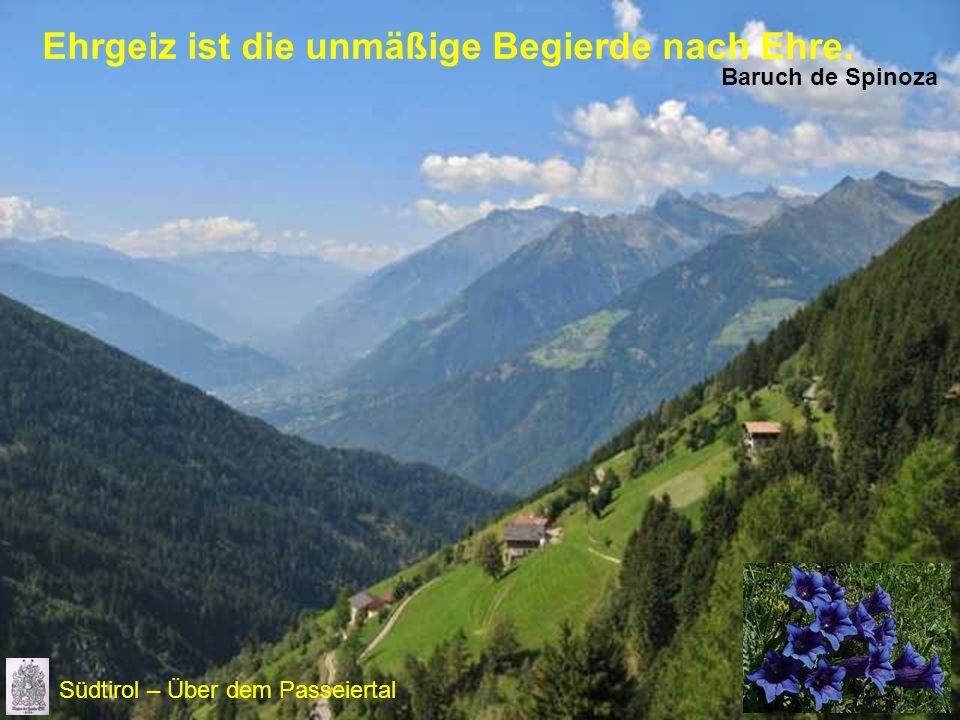 Ehrgeiz ist die unmäßige Begierde nach Ehre. Baruch de Spinoza Südtirol – Über dem Passeiertal