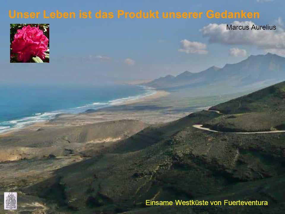 Unser Leben ist das Produkt unserer Gedanken Marcus Aurelius Einsame Westküste von Fuerteventura