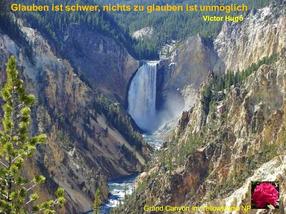 Glauben ist schwer, nichts zu glauben ist unmöglich Victor Hugo Grand Canyon im Yellowstone NP