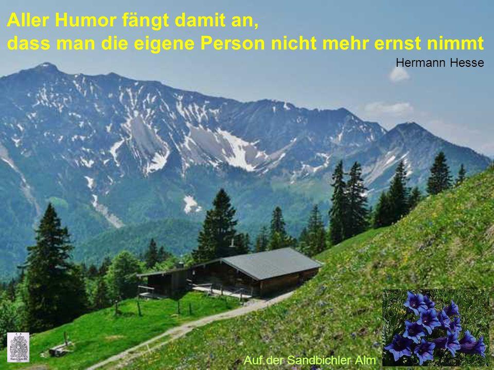Aller Humor fängt damit an, dass man die eigene Person nicht mehr ernst nimmt Hermann Hesse Auf der Sandbichler Alm
