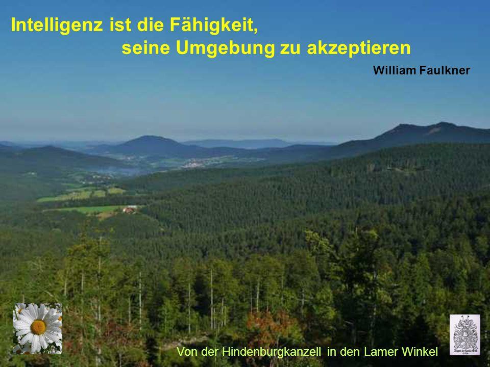 Intelligenz ist die Fähigkeit, seine Umgebung zu akzeptieren William Faulkner Von der Hindenburgkanzell in den Lamer Winkel
