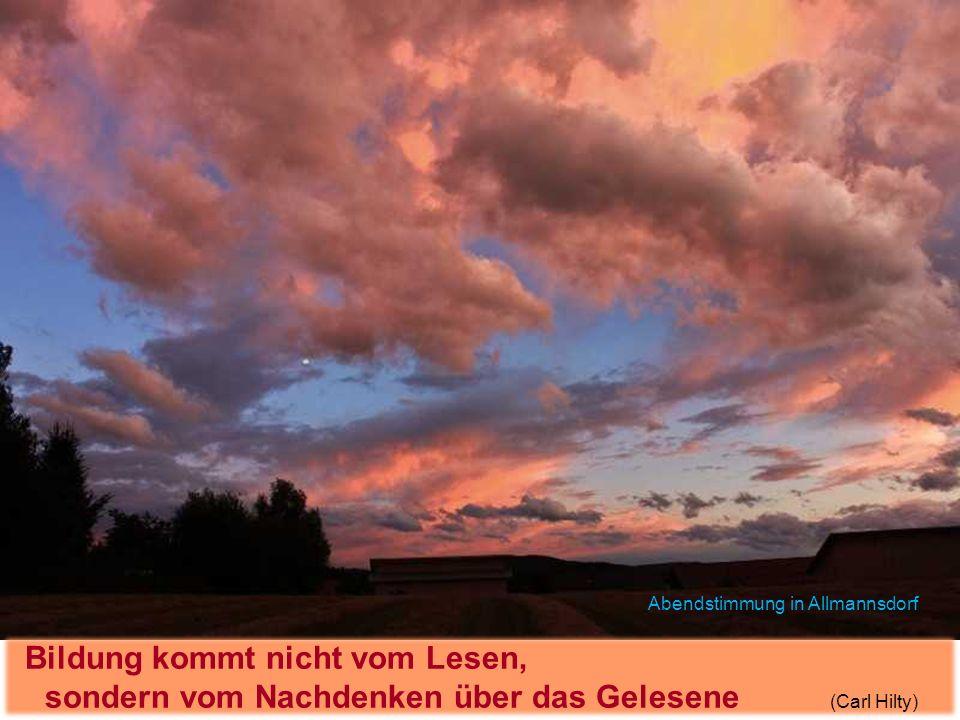 Bildung kommt nicht vom Lesen, sondern vom Nachdenken über das Gelesene (Carl Hilty) Abendstimmung in Allmannsdorf