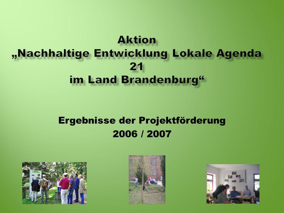 Ergebnisse der Projektförderung 2006 / 2007