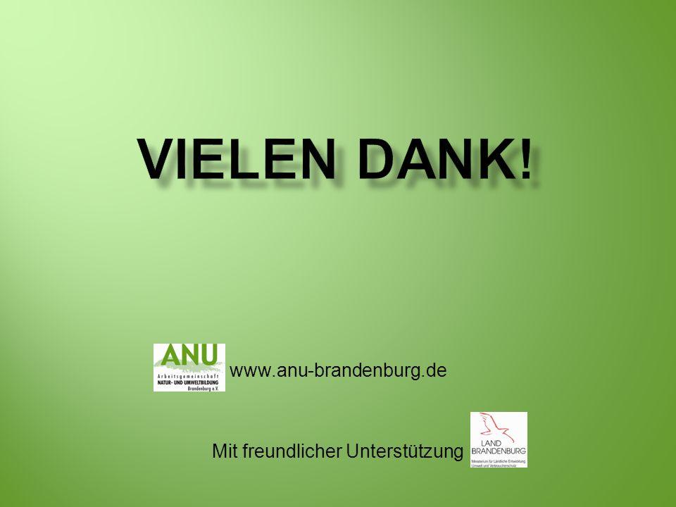 www.anu-brandenburg.de Mit freundlicher Unterstützung