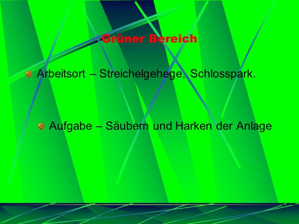 Grüner Bereich Arbeitsort – Streichelgehege, Schlosspark. Aufgabe – Säubern und Harken der Anlage