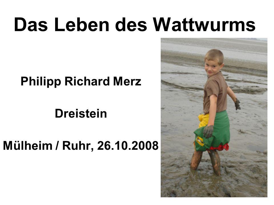 Das Leben des Wattwurms Philipp Richard Merz Dreistein Mülheim / Ruhr, 26.10.2008