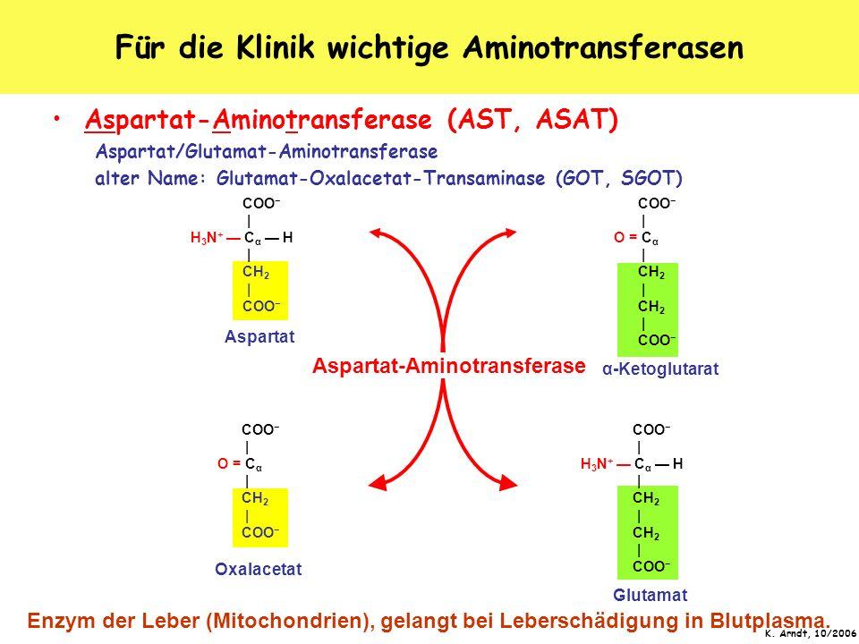 K. Arndt, 10/2006 Für die Klinik wichtige Aminotransferasen Aspartat-Aminotransferase (AST, ASAT) Aspartat/Glutamat-Aminotransferase alter Name: Gluta