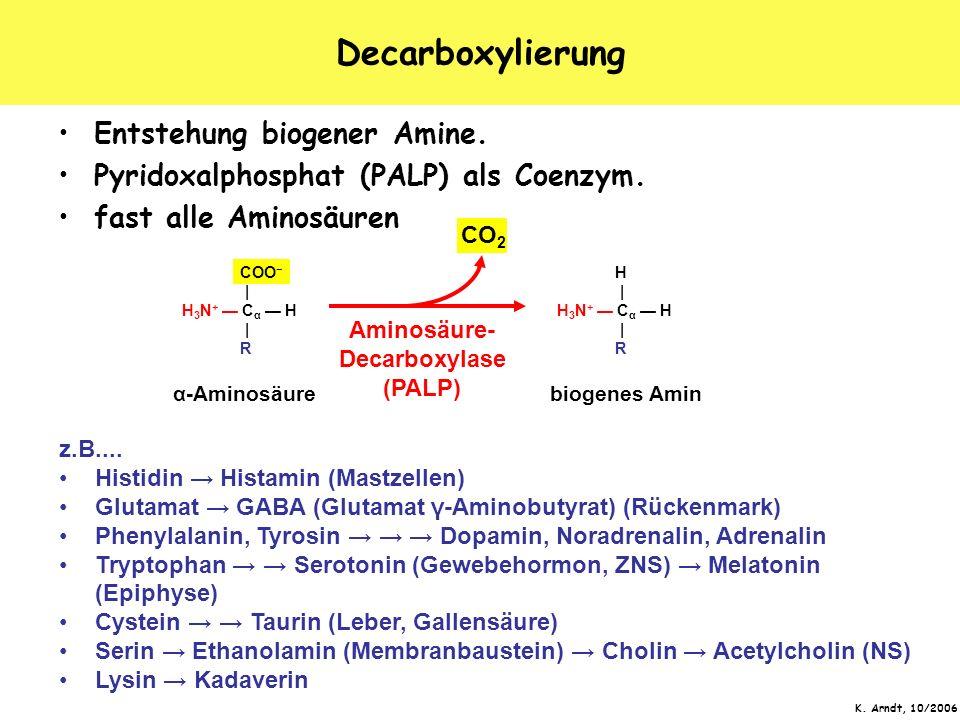 K. Arndt, 10/2006 Decarboxylierung Entstehung biogener Amine. Pyridoxalphosphat (PALP) als Coenzym. fast alle Aminosäuren α-Aminosäure COO   H 3 N + C