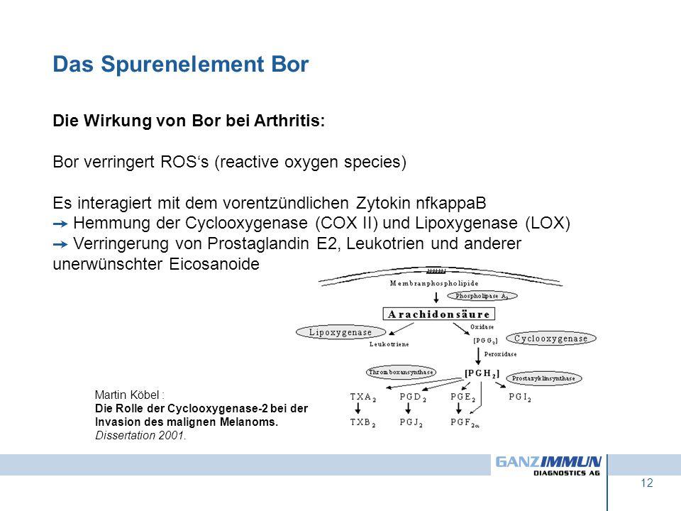 12 Die Wirkung von Bor bei Arthritis: Bor verringert ROSs (reactive oxygen species) Es interagiert mit dem vorentzündlichen Zytokin nfkappaB Hemmung d
