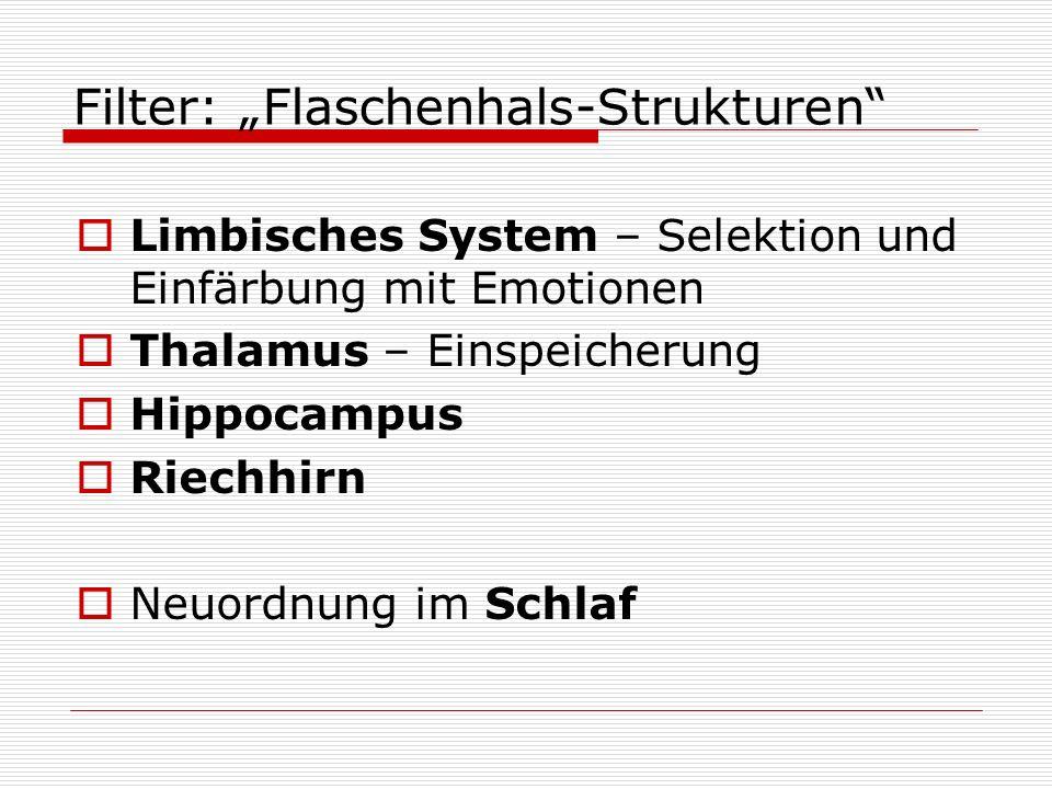 Filter: Flaschenhals-Strukturen Limbisches System – Selektion und Einfärbung mit Emotionen Thalamus – Einspeicherung Hippocampus Riechhirn Neuordnung