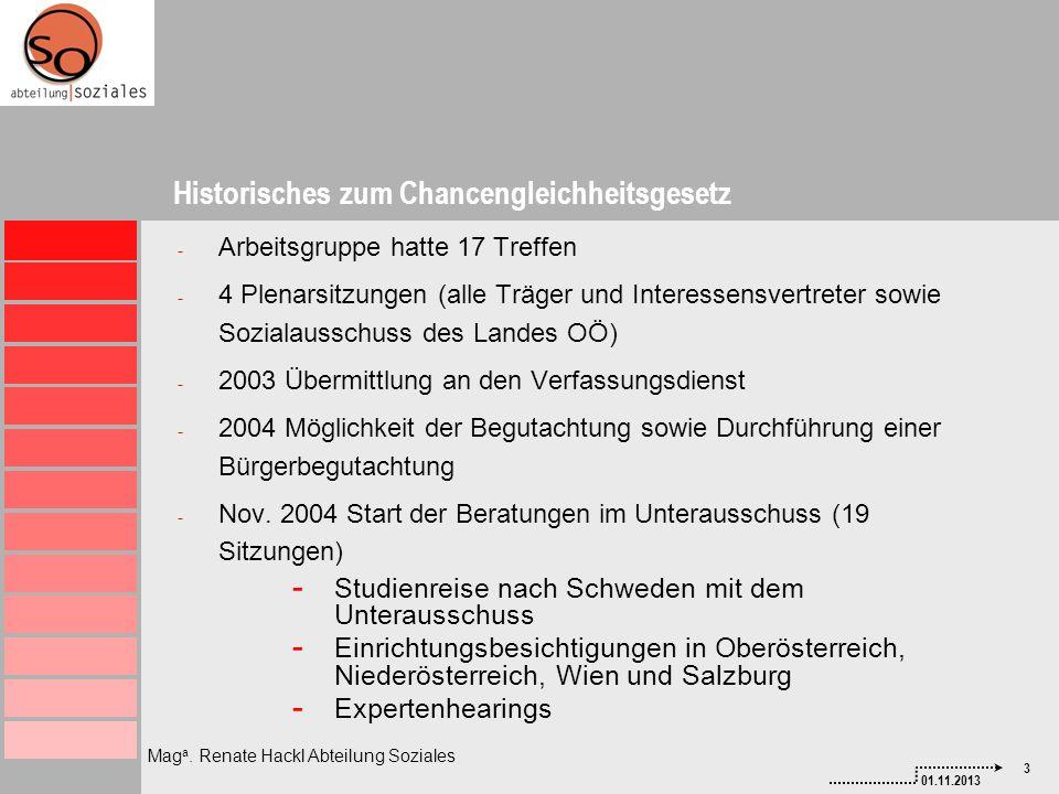 3 01.11.2013 Mag a. Renate Hackl Abteilung Soziales - Arbeitsgruppe hatte 17 Treffen - 4 Plenarsitzungen (alle Träger und Interessensvertreter sowie S