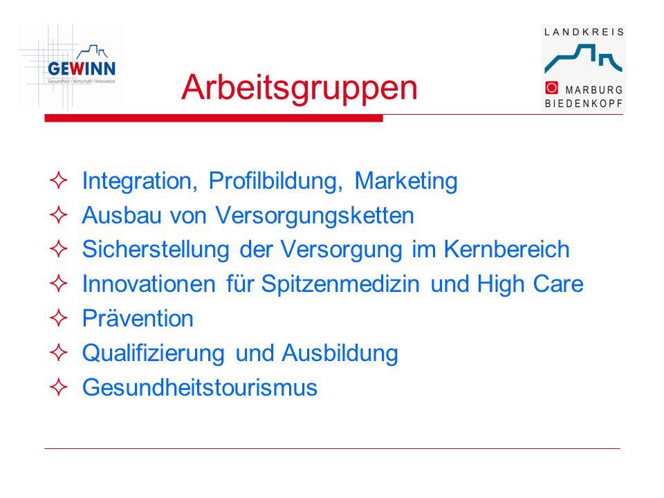 Arbeitsgruppen Integration, Profilbildung, Marketing Ausbau von Versorgungsketten Sicherstellung der Versorgung im Kernbereich Innovationen für Spitze