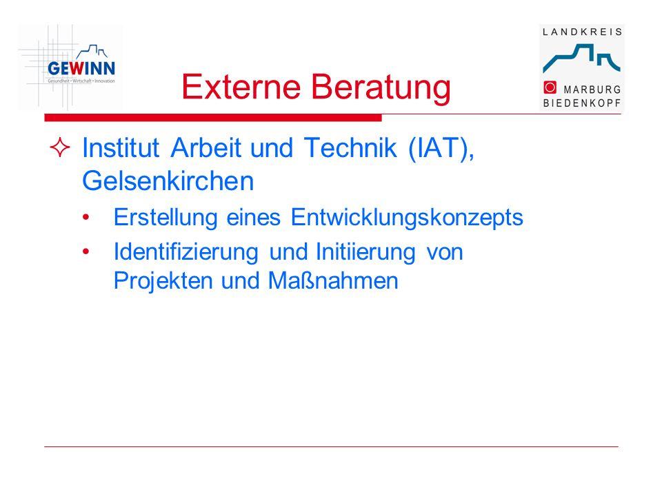 Externe Beratung Institut Arbeit und Technik (IAT), Gelsenkirchen Erstellung eines Entwicklungskonzepts Identifizierung und Initiierung von Projekten