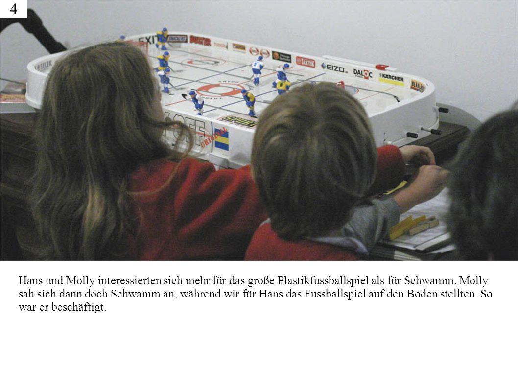 Hans und Molly interessierten sich mehr für das große Plastikfussballspiel als für Schwamm.