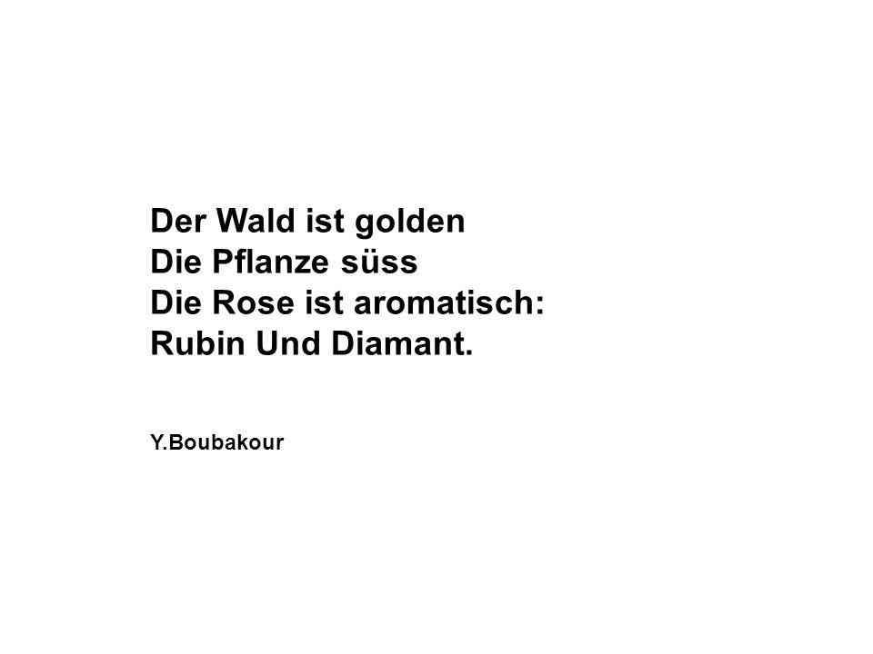 Der Wald ist golden Die Pflanze süss Die Rose ist aromatisch: Rubin Und Diamant. Y.Boubakour