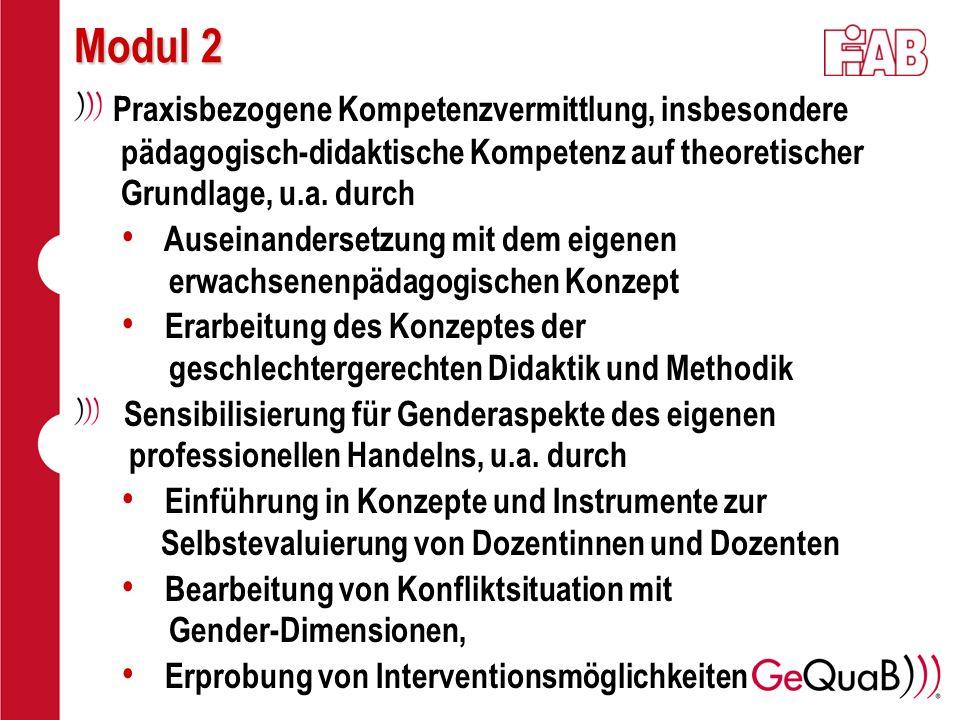 Modul 2 Praxisbezogene Kompetenzvermittlung, insbesondere pädagogisch-didaktische Kompetenz auf theoretischer Grundlage, u.a. durch Auseinandersetzung
