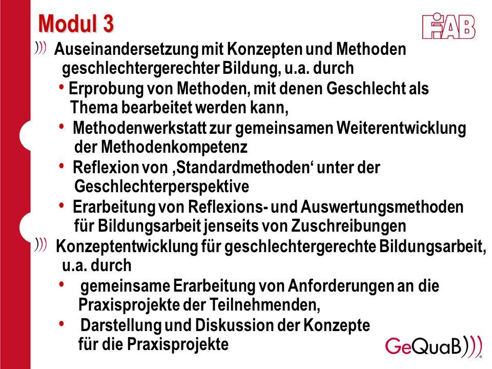 Modul 3 Auseinandersetzung mit Konzepten und Methoden geschlechtergerechter Bildung, u.a. durch Erprobung von Methoden, mit denen Geschlecht als Thema