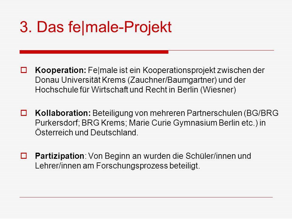 3. Das fe male-Projekt Kooperation: Fe male ist ein Kooperationsprojekt zwischen der Donau Universität Krems (Zauchner/Baumgartner) und der Hochschule