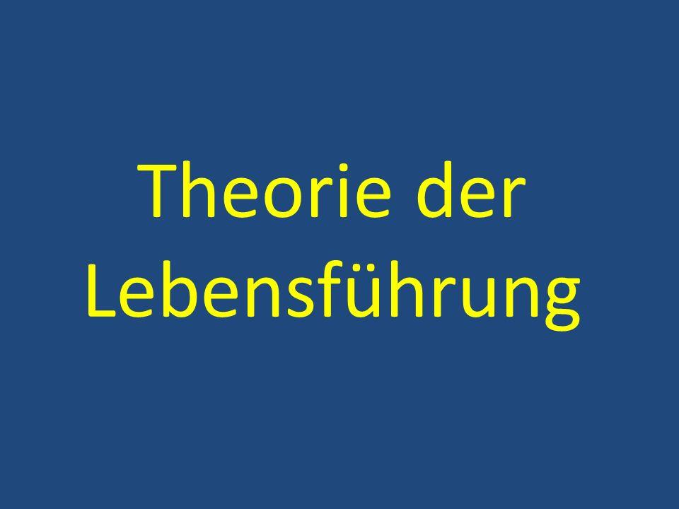 Theorie der Lebensführung