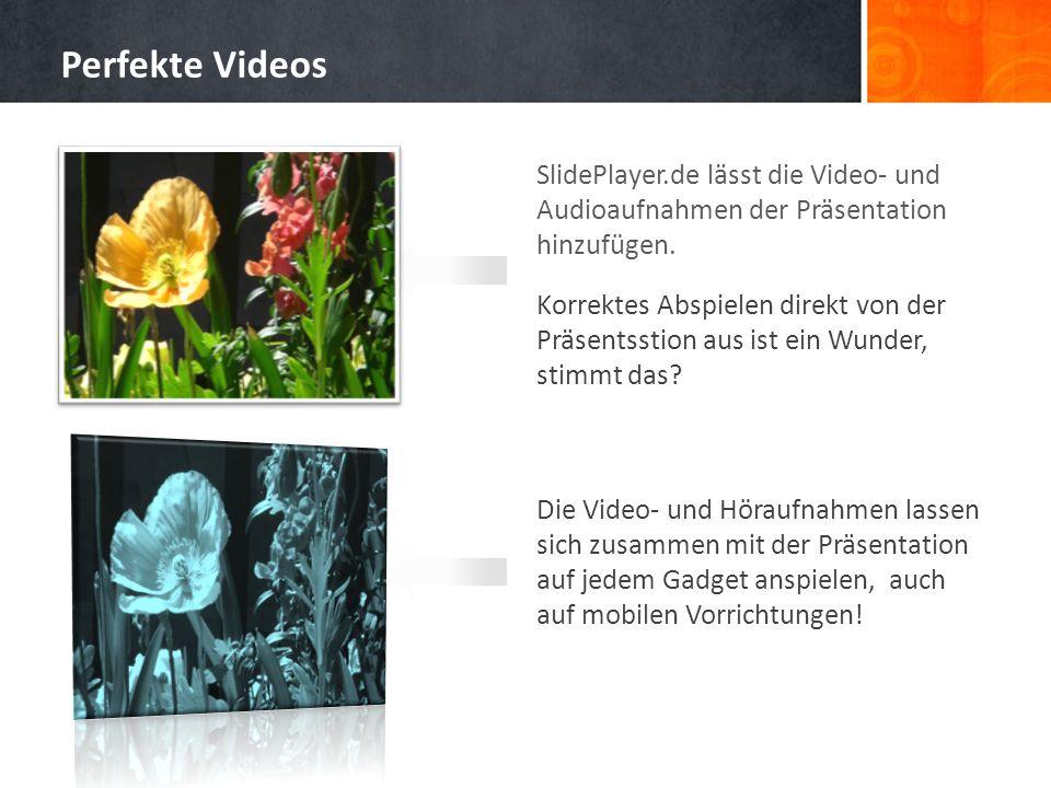 SlidePlayer.de lässt die Video- und Audioaufnahmen der Präsentation hinzufügen. Korrektes Abspielen direkt von der Präsentsstion aus ist ein Wunder, s