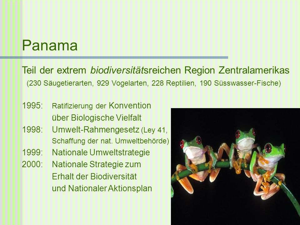 Panama Teil der extrem biodiversitätsreichen Region Zentralamerikas (230 Säugetierarten, 929 Vogelarten, 228 Reptilien, 190 Süsswasser-Fische) 1995: R