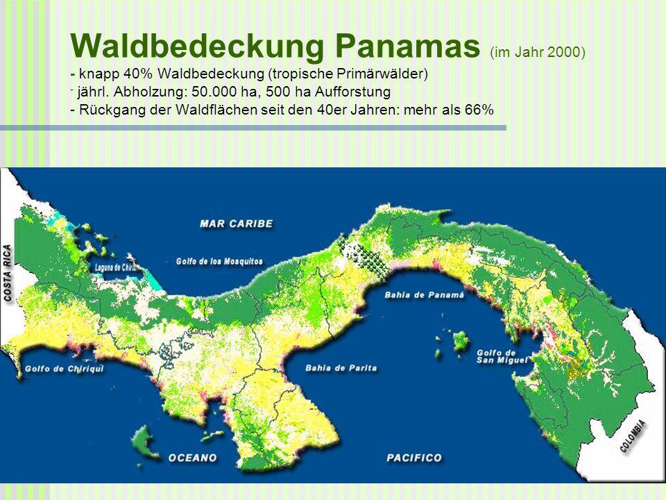 Waldbedeckung Panamas (im Jahr 2000) - knapp 40% Waldbedeckung (tropische Primärwälder) - jährl. Abholzung: 50.000 ha, 500 ha Aufforstung - Rückgang d