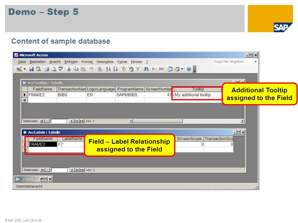 © SAP 2008 / Loff CSUN 25 Demo – Step 5 Content of sample database Additional Tooltip assigned to the Field Field – Label Relationship assigned to the