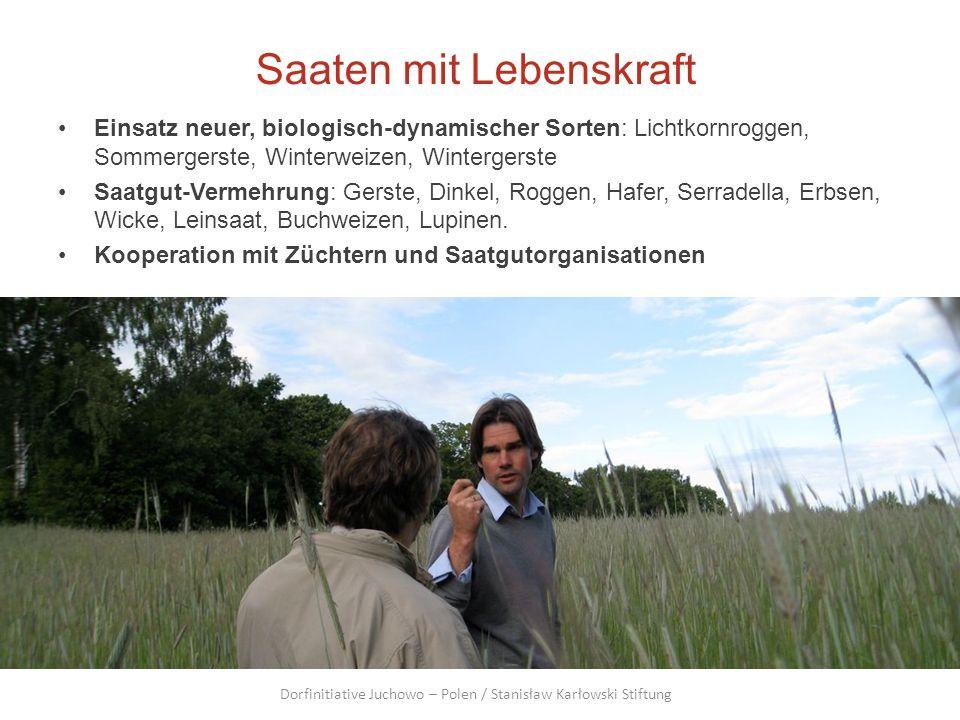 Saaten mit Lebenskraft Einsatz neuer, biologisch-dynamischer Sorten: Lichtkornroggen, Sommergerste, Winterweizen, Wintergerste Saatgut-Vermehrung: Ger