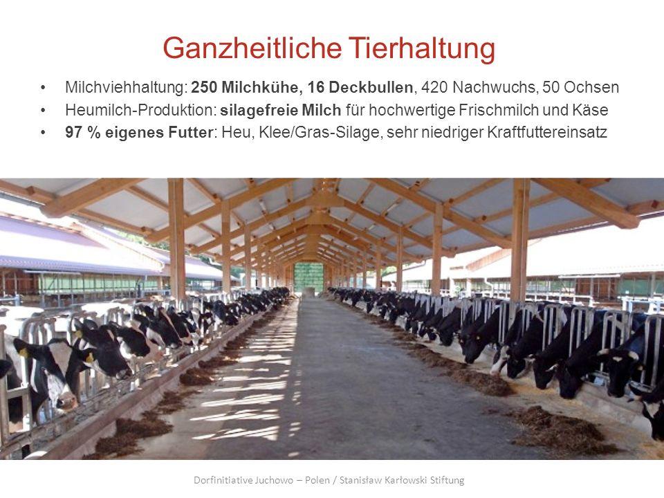 Ganzheitliche Tierhaltung Milchviehhaltung: 250 Milchkühe, 16 Deckbullen, 420 Nachwuchs, 50 Ochsen Heumilch-Produktion: silagefreie Milch für hochwert