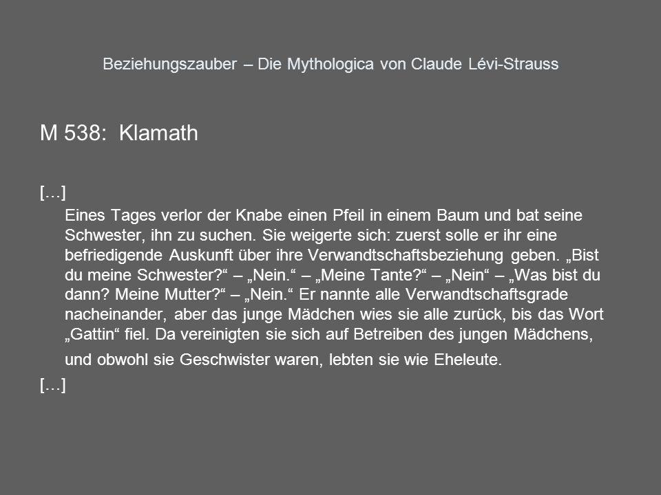 Beziehungszauber – Die Mythologica von Claude Lévi-Strauss M 538: Klamath […] Eines Tages verlor der Knabe einen Pfeil in einem Baum und bat seine Sch