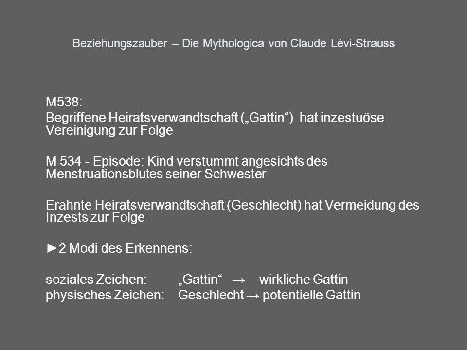 Beziehungszauber – Die Mythologica von Claude Lévi-Strauss M538: Begriffene Heiratsverwandtschaft (Gattin) hat inzestuöse Vereinigung zur Folge M 534