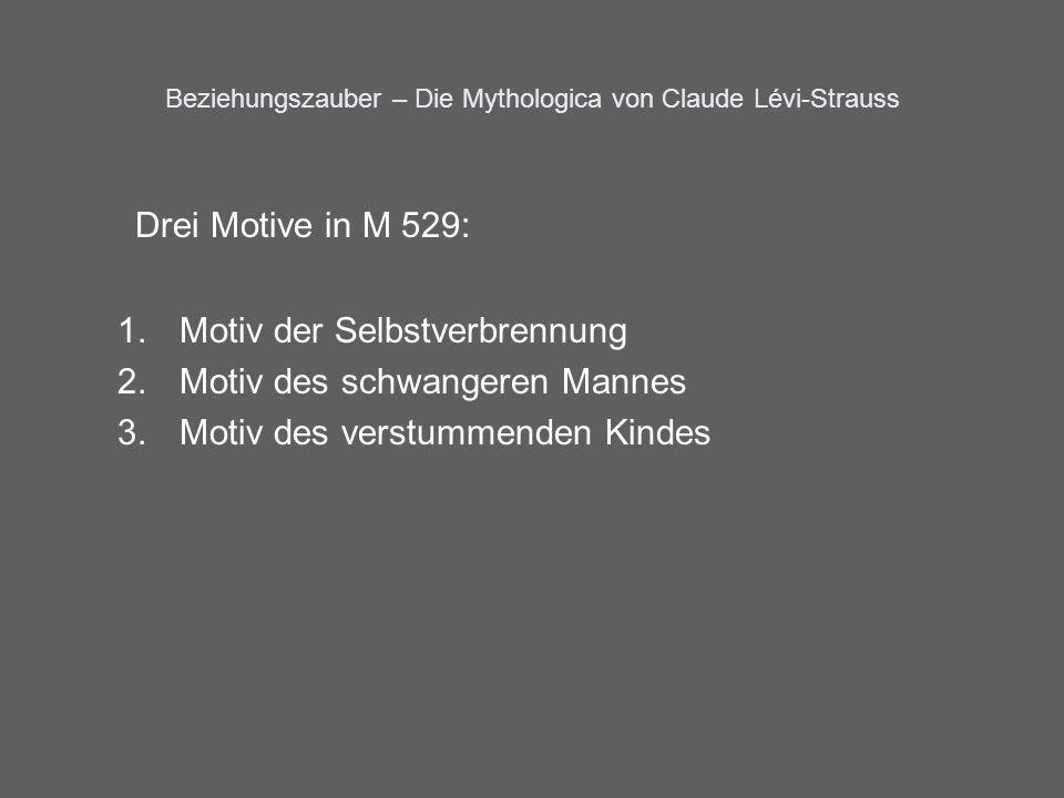Beziehungszauber – Die Mythologica von Claude Lévi-Strauss Drei Motive in M 529: 1.Motiv der Selbstverbrennung 2.Motiv des schwangeren Mannes 3.Motiv