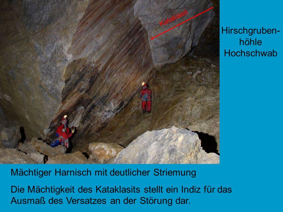 Hirschgruben- höhle Hochschwab Mächtiger Harnisch mit deutlicher Striemung Die Mächtigkeit des Kataklasits stellt ein Indiz für das Ausmaß des Versatz