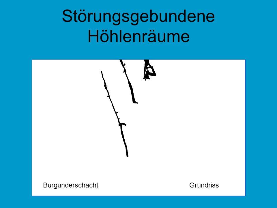 Störungsgebundene Höhlenräume GrundrissBurgunderschacht