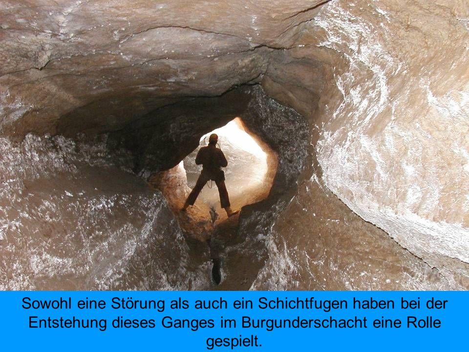 Sowohl eine Störung als auch ein Schichtfugen haben bei der Entstehung dieses Ganges im Burgunderschacht eine Rolle gespielt.