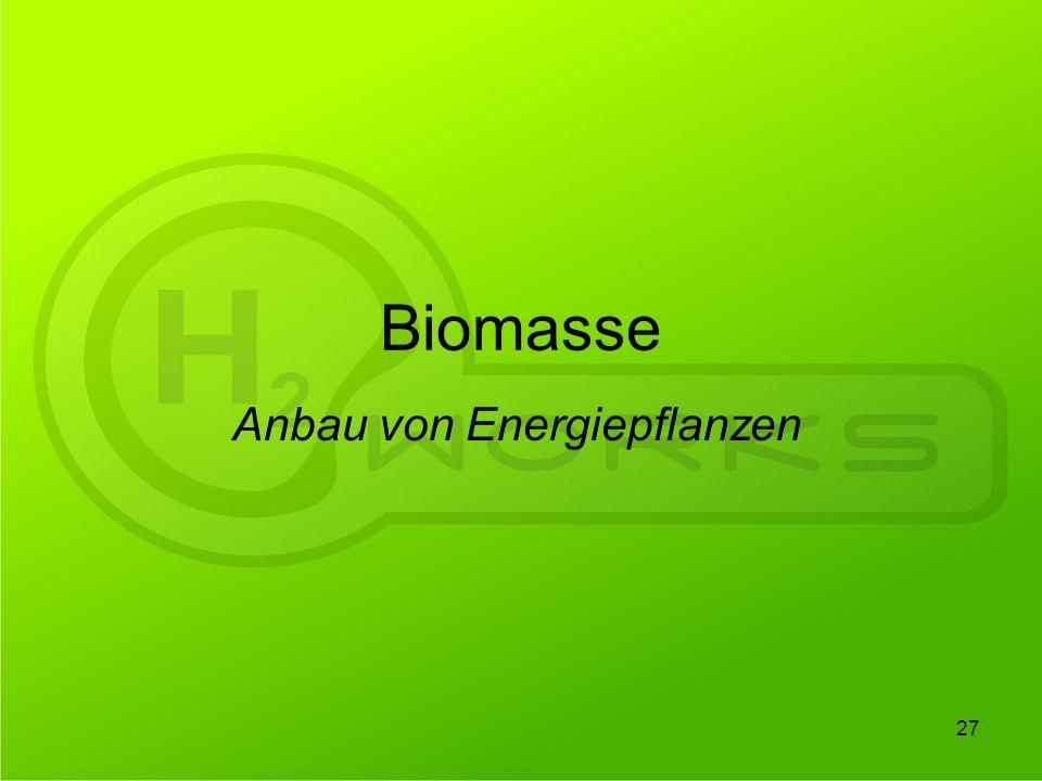 Biomasse Anbau von Energiepflanzen 27