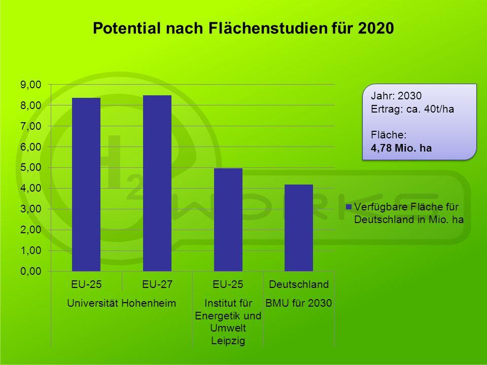 Jahr: 2030 Ertrag: ca. 40t/ha Fläche: 4,78 Mio. ha Jahr: 2030 Ertrag: ca. 40t/ha Fläche: 4,78 Mio. ha