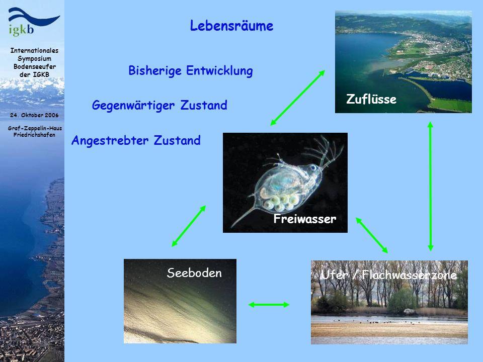 Internationales Symposium Bodenseeufer der IGKB 24. Oktober 2006 Graf-Zeppelin-Haus Friedrichshafen Lebensräume Freiwasser Seeboden Ufer / Flachwasser