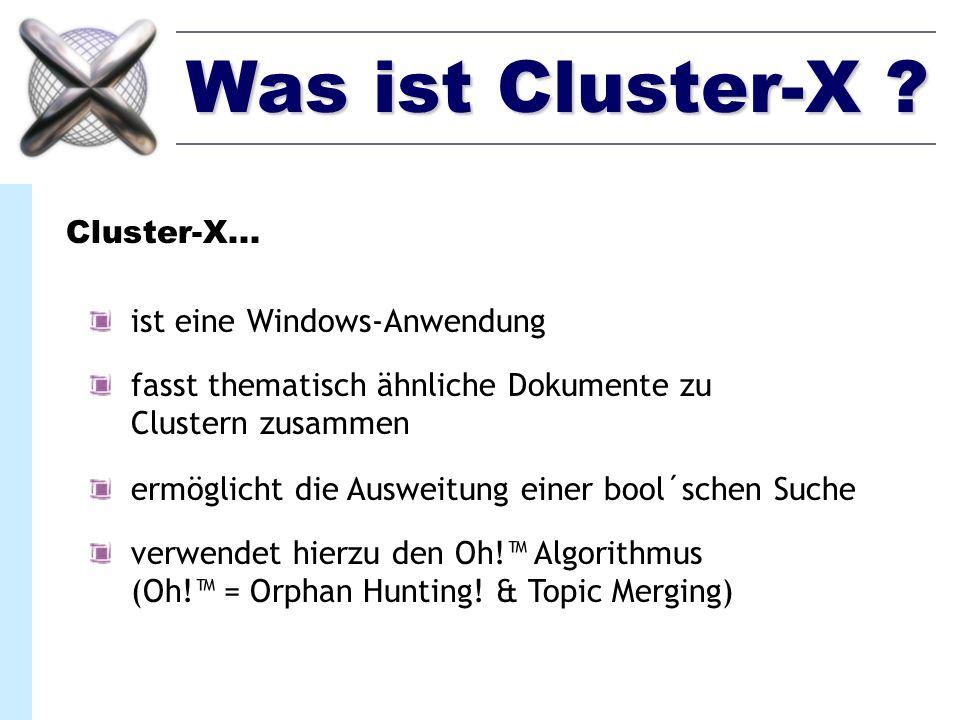 Entwicklung Cluster-X wurde in C++ unter MS-Windows entwickelt Es wurde Wert auf kurze Laufzeiten gelegt Verwendete Bibliotheken: - MFC für die GUI - selbst entwickelte Matrix- & Vektorklassen