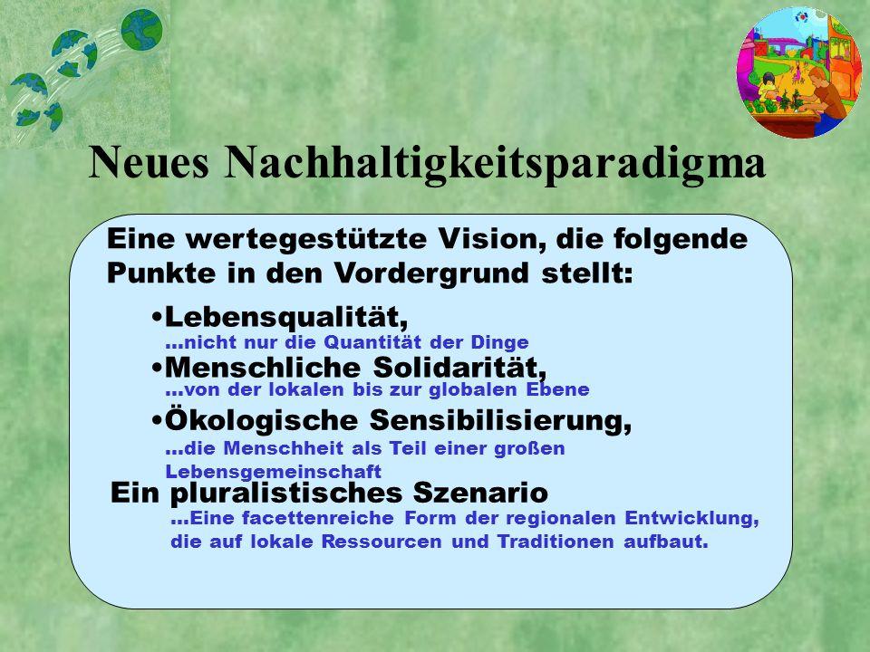 Neues Nachhaltigkeitsparadigma Lebensqualität, Eine wertegestützte Vision, die folgende Punkte in den Vordergrund stellt: Ein pluralistisches Szenario