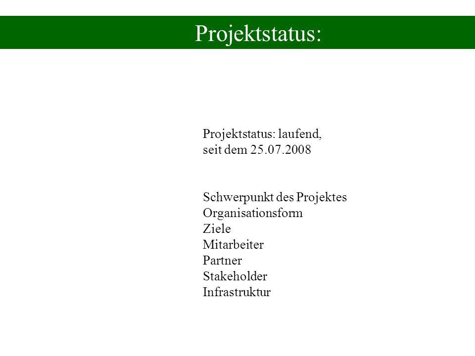 Projektstatus: Projektstatus: laufend, seit dem 25.07.2008 Schwerpunkt des Projektes Organisationsform Ziele Mitarbeiter Partner Stakeholder Infrastru