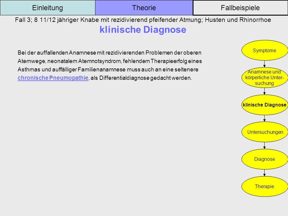 Fall 3; 8 11/12 jähriger Knabe mit rezidivierend pfeifender Atmung; Husten und Rhinorrhoe klinische Diagnose Einleitung Fallbeispiele Theorie Symptome