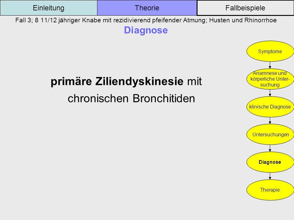 Fall 3; 8 11/12 jähriger Knabe mit rezidivierend pfeifender Atmung; Husten und Rhinorrhoe Diagnose Einleitung Fallbeispiele Theorie Symptome Anamnese