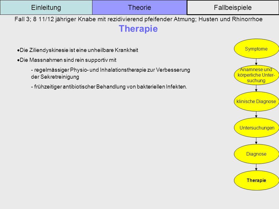 Fall 3; 8 11/12 jähriger Knabe mit rezidivierend pfeifender Atmung; Husten und Rhinorrhoe Therapie Einleitung Fallbeispiele Theorie Symptome Anamnese