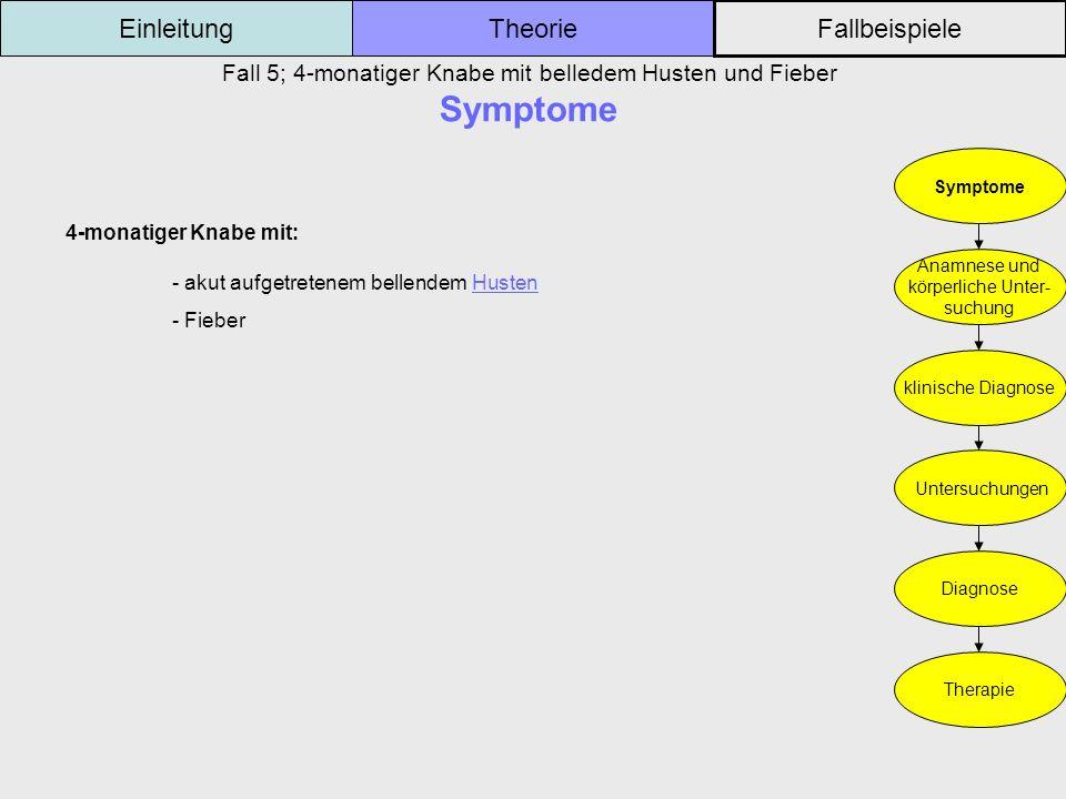 Fall 5; 4-monatiger Knabe mit belledem Husten und Fieber Symptome Einleitung Fallbeispiele Theorie Symptome Anamnese und körperliche Unter- suchung kl