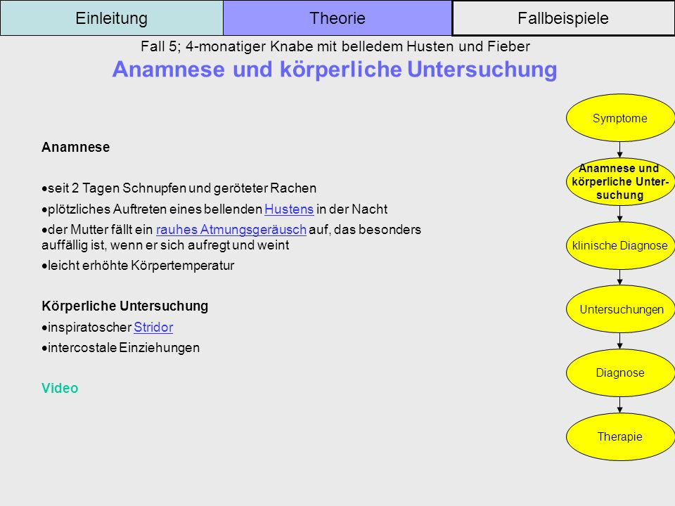 Fall 5; 4-monatiger Knabe mit belledem Husten und Fieber Anamnese und körperliche Untersuchung Einleitung Fallbeispiele Theorie Symptome Anamnese und